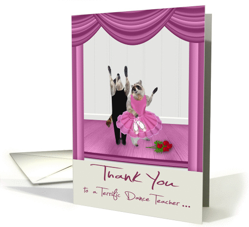 Thank You to Dance Teacher, ballet, Raccoons in tutu and... (1463682)