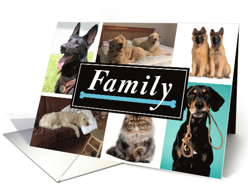 Dogs Family Photo Collage Father's Day From Pet card (1519170)