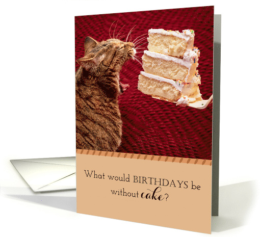 Funny Cat Eating a Giant Piece of Birthday Cake. card (1507950)