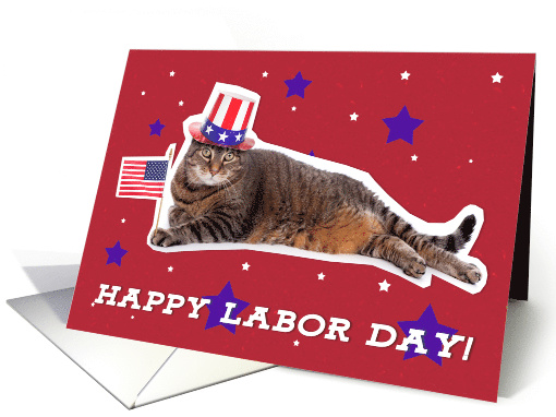 Happy Labor Day Patriotic Kitty Cat Humor card (1531764)