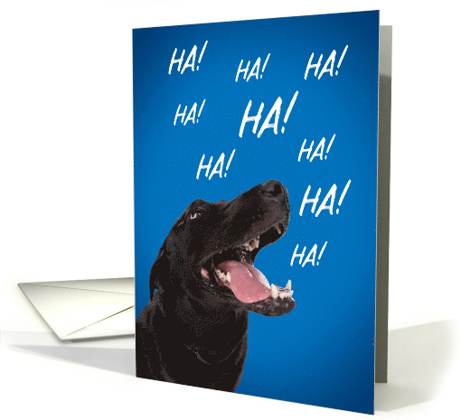 Happy Birthday For Anyone Laughing Dog Humor card (1546840)