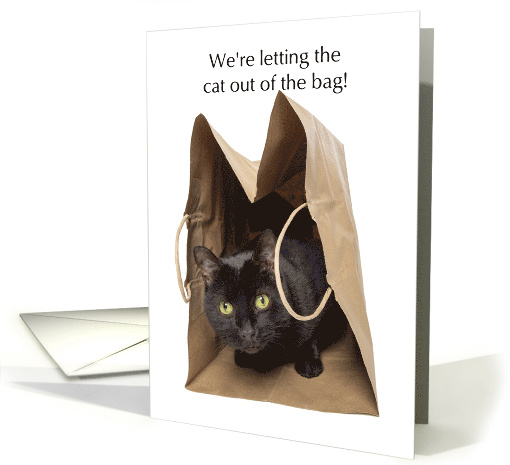 Letting the Cat out of the Bag Pregnancy Announcement Humor card