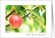 Persian New Year Eide Shoma Mobarak Hanging Apple card