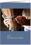 Western Horse Sympathy Male Rancher Caring Hands card
