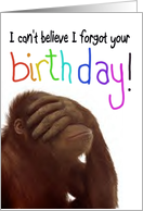 Monkey Happy Belated Birthday Funny Animal Paper Card