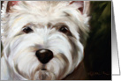 Westie West Highland Terrier Dog -In Your Face card