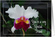 purple and white orchid thank you special friend card