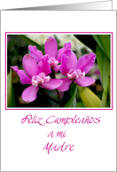 Happy birthday mother spanish 3 purple orchids card