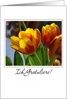 golden tulips German congratulations card