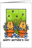 mother's day - kitties card