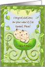Customizable Congratulations on New Twins-Baby in Pea Pod Stroller card
