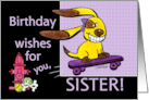 Birthday for Sister Skateboarding Dog-yEARS Fly By card