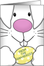 Happy Easter From Grandkids-Up Close Bunny Face with Egg card