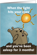 Humorous Happy Groundhog Day Groundhog Squints at the Sun card