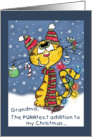Christmas for Grandma- Decorated Cat card