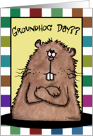 Happy Groundhog Day-February 2nd Working Groundhog card