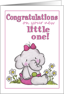 Congratulation on New Baby Girl-Elephant in Daisies card