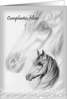 Whispering Winds Spanish Happy Birthday card
