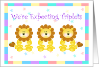 Little Lion's Starry Sky Expecting Triplets card