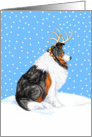 Collie Tri Dog Christmas Collie Deer card