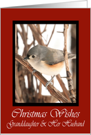 Granddaughter And Her Husband Titmouse Christmas Wishes Card