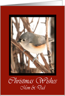 Mom And Dad Titmouse Christmas Wishes Card