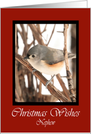 Nephew Titmouse Christmas Wishes Card