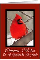 Grandson And His Family Cardinal Christmas Wishes Card