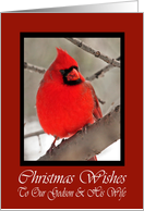 Our Godson And His Wife Cardinal Christmas Wishes Card