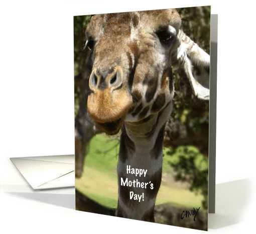 Mother's Day card (126461)