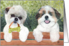 Shih Tzu Dogs Love Bone Ornament Any Occasion card