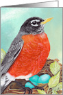 Robin's Nest Bird Painting Cheerful Encouragement Message card