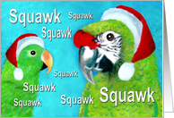 Eclectus & Military Parrot Christmas card