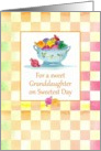 For a sweet Granddaughter on Sweetest Day Candy Pastel Checks card
