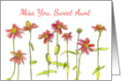 Miss You Sweet Aunt Red Zinnia Flowers Watercolor Art card