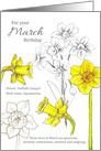 For Your March Birthday Daffodils Jonquils Botanical card