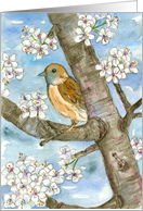 Congratulations From Group Sparrow Bird Tree Watercolor Painting card