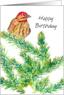 Happy Birthday Business Client Bird Tree card