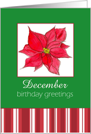 December Birthday Greetings Red Poinsettia Flower card