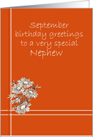 Happy September Birthday Nephew White Aster Flower Drawing card