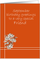 Happy September Birthday Friend White Aster Flower Drawing card