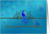 Peacock Wedding Invitation, Peacock Feathers, Peacock Theme card