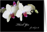 Just to Say Thank You Administrative Professionals Day Card Orchids card