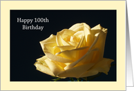 100th Birthday Card -- Yellow Rose card