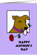 Mothers Day Card from Dog -- A Rose from your Brown Pooch card