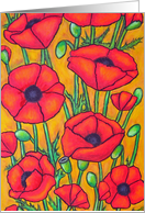 Poppies - Thank You Card