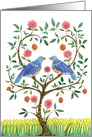 Wedding Anniversary Blue Doves card
