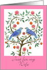 Wife Anniversary Blue Doves card