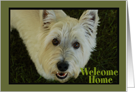 White Welcome Home Dog card