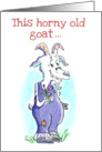 Happy Anniversary Horny Old Goat Humor card